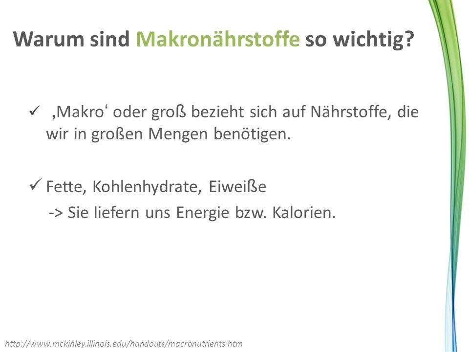 Warum sind Makronährstoffe so wichtig? ' Makro ' oder gro ß bezieht sich auf Nährstoffe, die wir in großen Mengen benötigen. Fette, Kohlenhydrate, Eiw