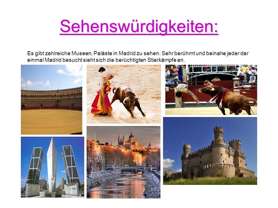 Sehenswürdigkeiten: Es gibt zahlreiche Museen, Paläste in Madrid zu sehen. Sehr berühmt und beinahe jeder der einmal Madrid besucht sieht sich die ber