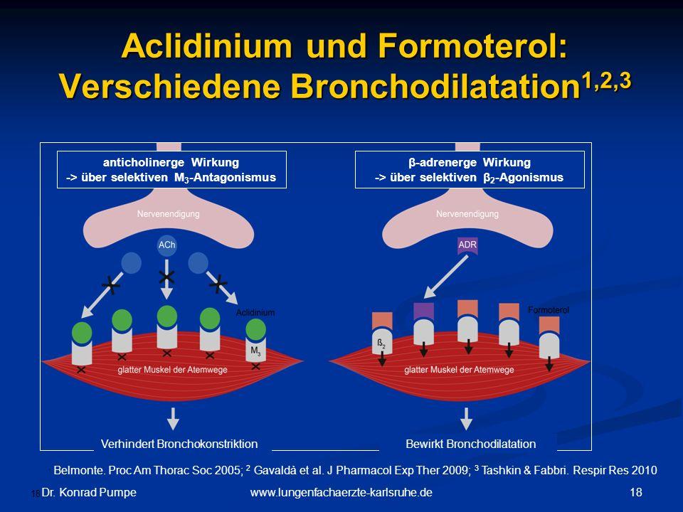 Dr. Konrad Pumpe 18www.lungenfachaerzte-karlsruhe.de Aclidinium und Formoterol: Verschiedene Bronchodilatation 1,2,3 18 anticholinerge Wirkung -> über