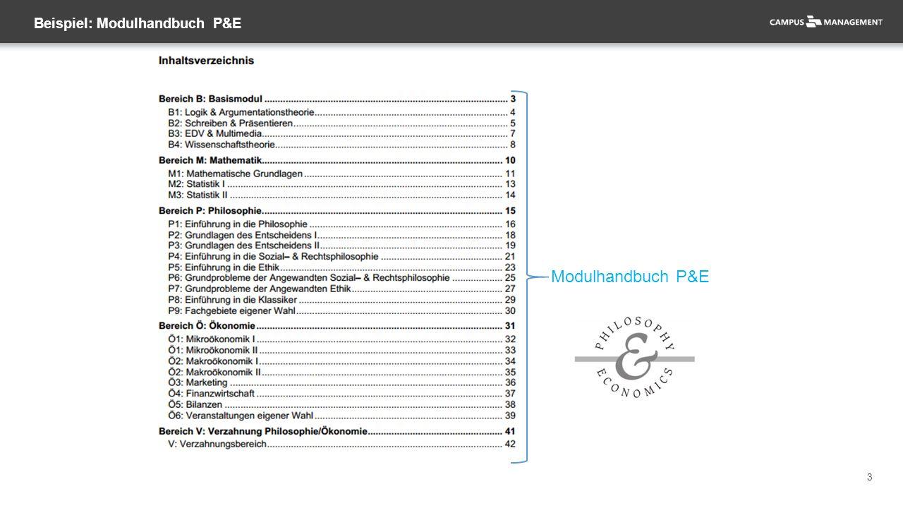 3 Beispiel: Modulhandbuch P&E Modulhandbuch P&E