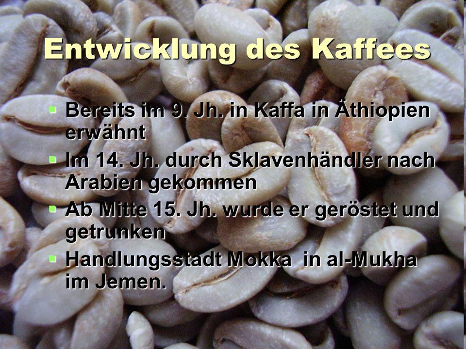 Entwicklung des Kaffees  Bereits im 9. Jh. in Kaffa in Äthiopien erwähnt  Im 14. Jh. durch Sklavenhändler nach Arabien gekommen  Ab Mitte 15. Jh. w