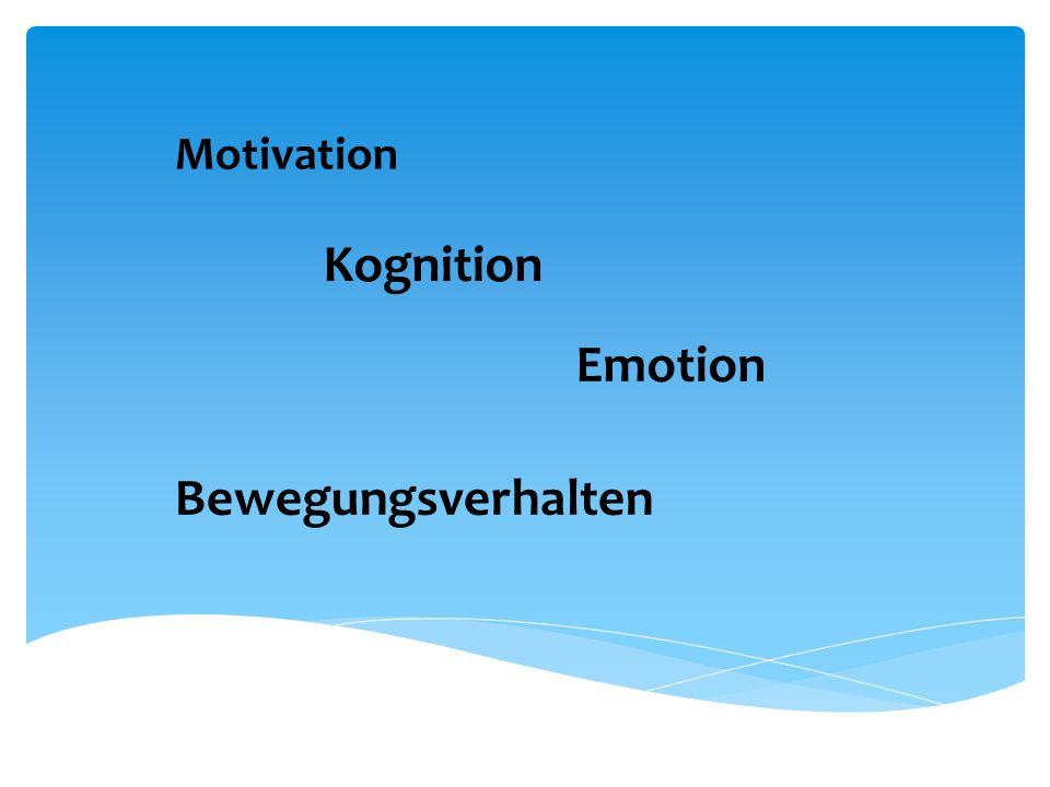 Konzentration Selbstregulation Zugriff Ressourcen/Informationen Handlungsplanung