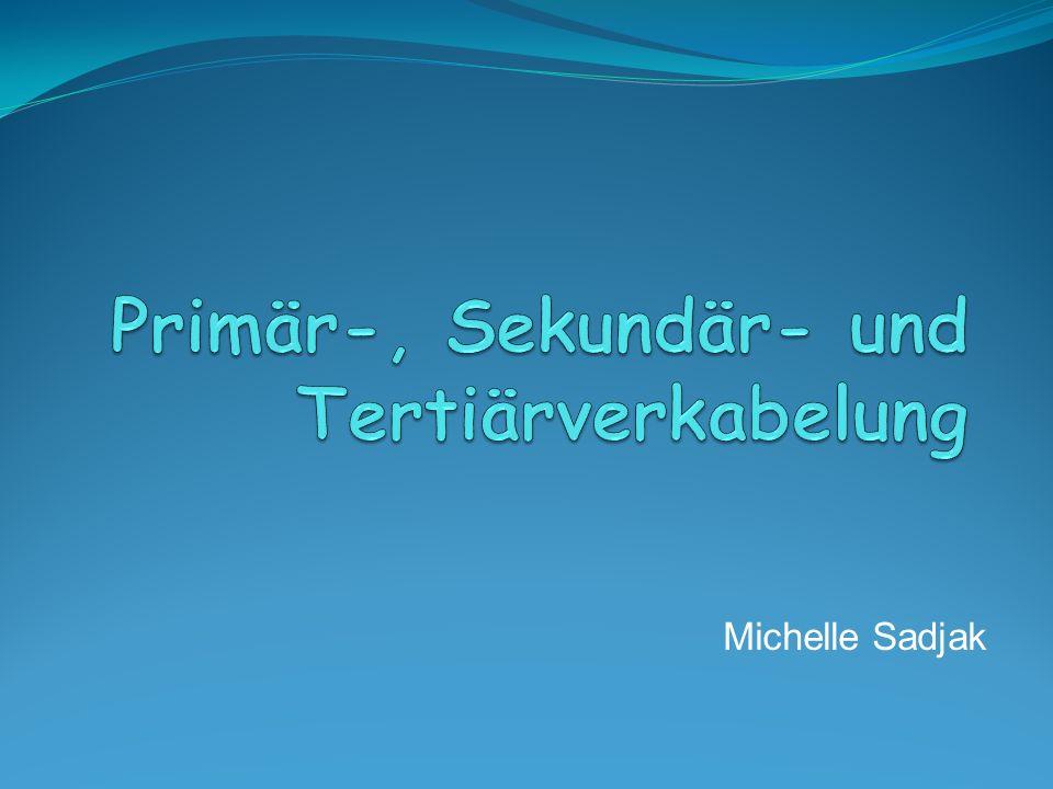 Michelle S adjak