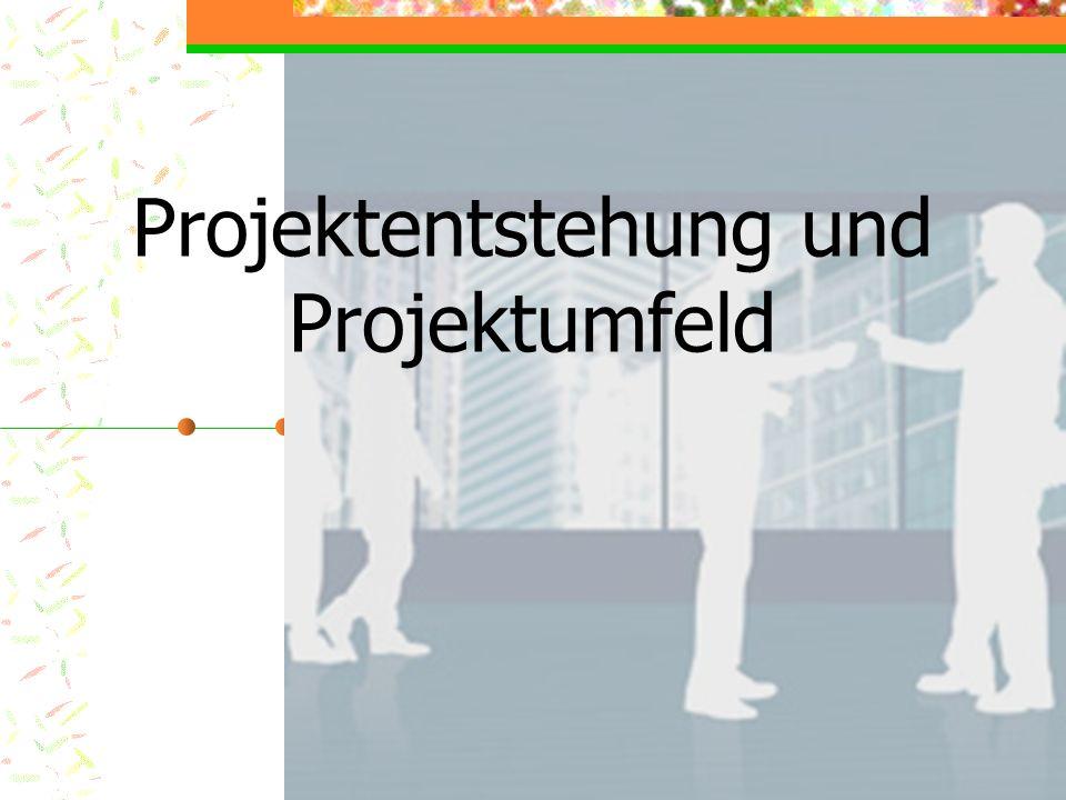 Projektentstehung und Projektumfeld