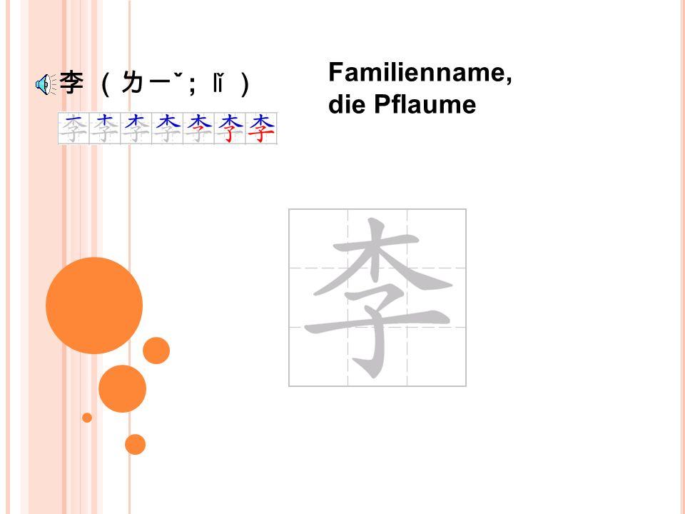 王 (ㄨㄤˊ ; wáng ) Familienname, der König