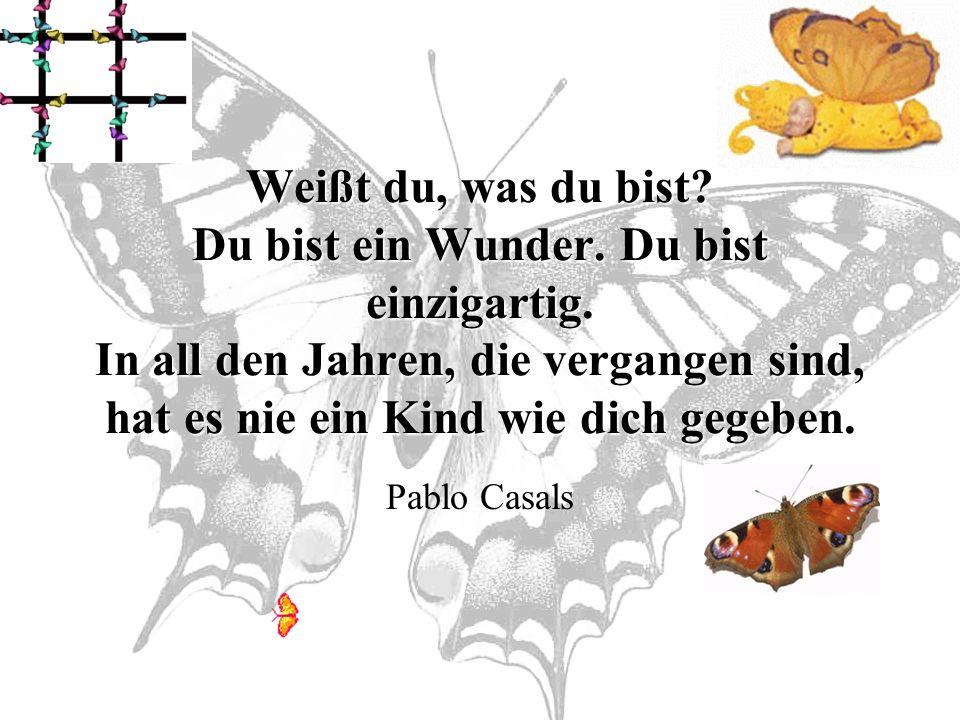 So fühlt sich die Welt für ein Schmetterlingskind an!
