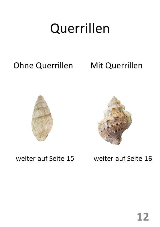 Querrillen Ohne QuerrillenMit Querrillen weiter auf Seite 15weiter auf Seite 16 12