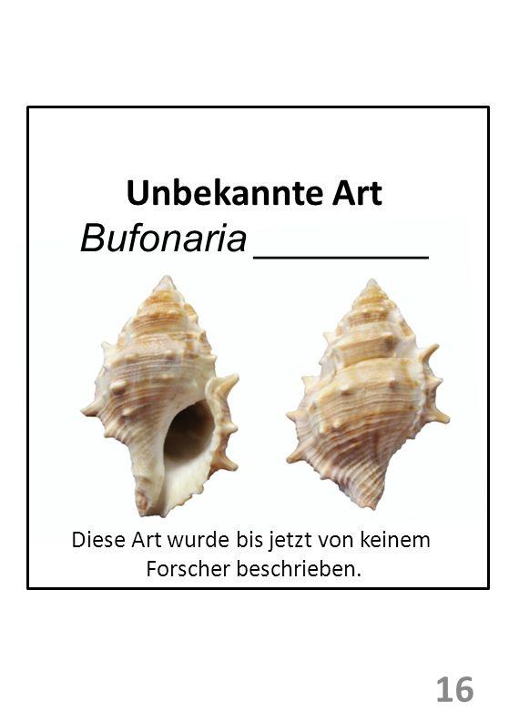 Unbekannte Art Bufonaria ________ 16 Diese Art wurde bis jetzt von keinem Forscher beschrieben.