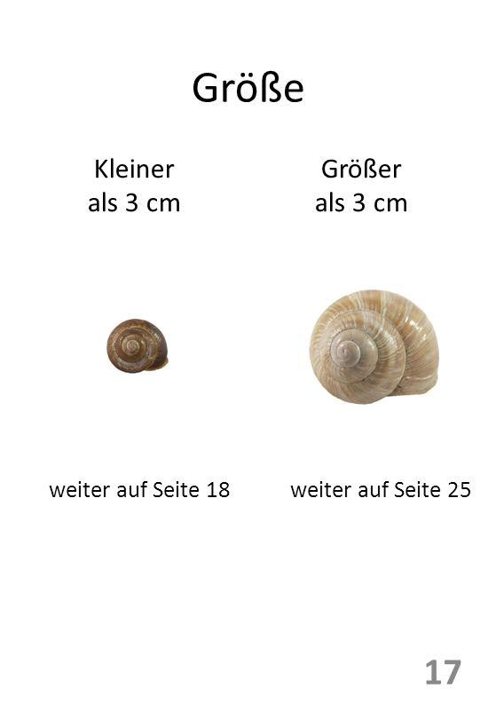 Größe Kleiner als 3 cm Größer als 3 cm weiter auf Seite 18weiter auf Seite 25 17