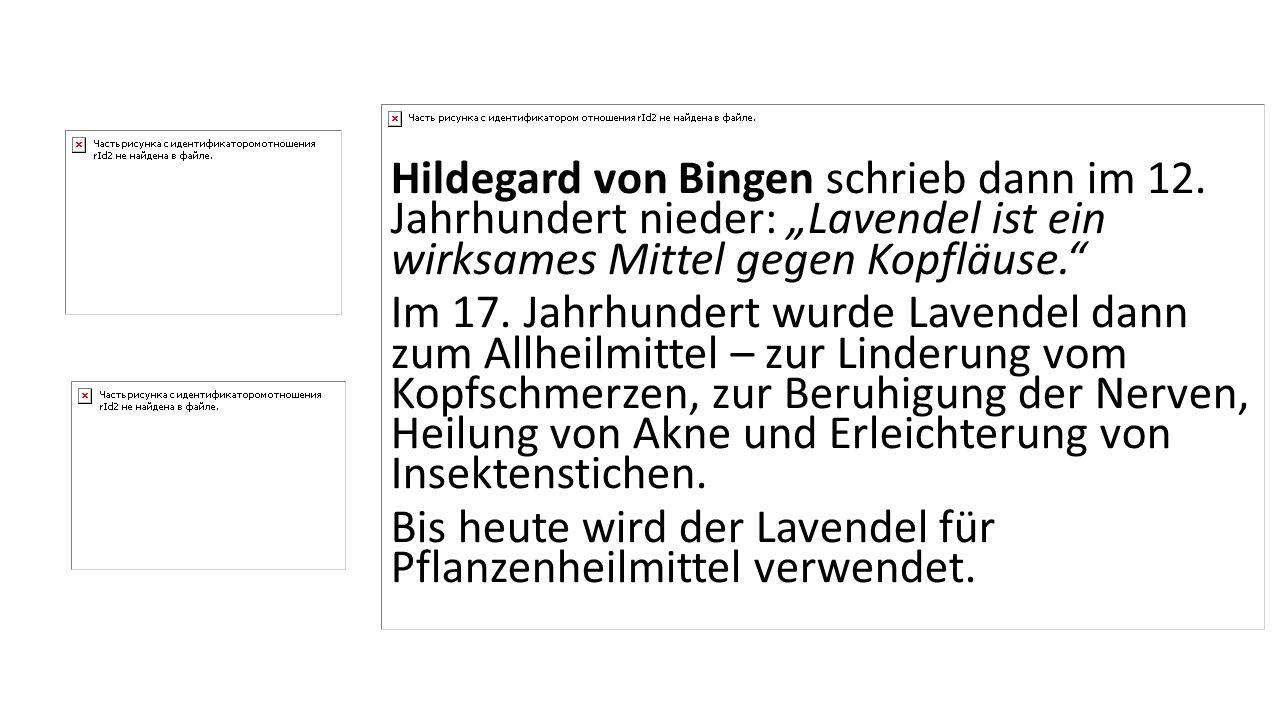 """Hildegard von Bingen schrieb dann im 12. Jahrhundert nieder: """"Lavendel ist ein wirksames Mittel gegen Kopfläuse."""" Im 17. Jahrhundert wurde Lavendel da"""