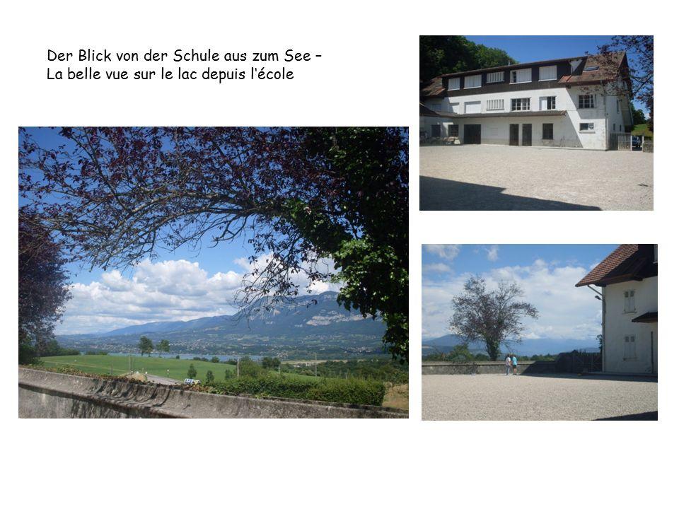 Der Blick von der Schule aus zum See – La belle vue sur le lac depuis l'école