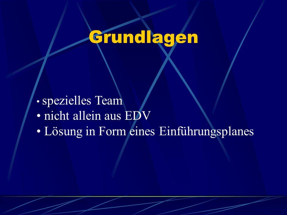 Grundlagen spezielles Team nicht allein aus EDV Lösung in Form eines Einführungsplanes