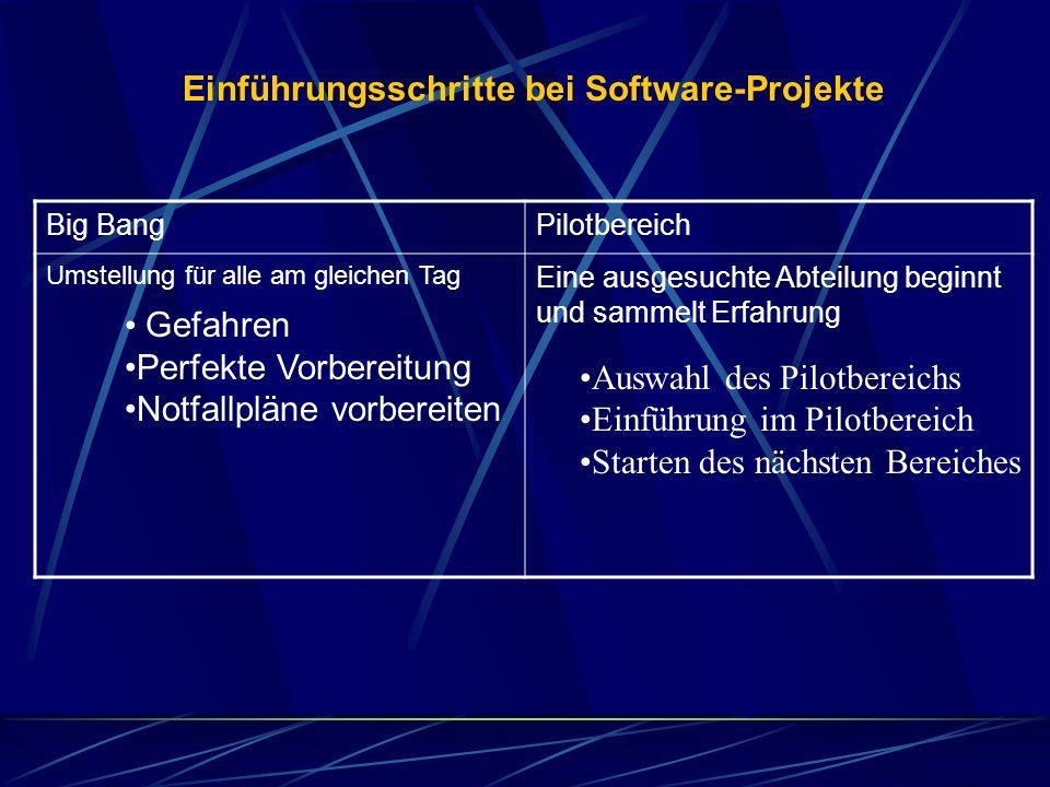 Einführungsschritte bei Software-Projekte Big BangPilotbereich Umstellung für alle am gleichen Tag Eine ausgesuchte Abteilung beginnt und sammelt Erfa