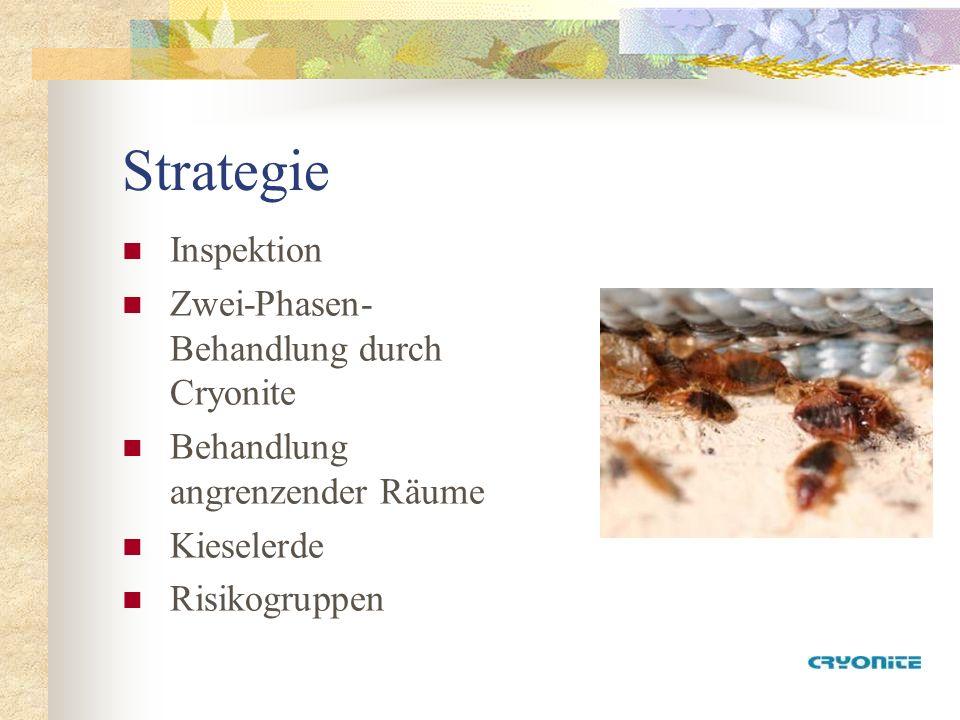 Strategie Inspektion Zwei-Phasen- Behandlung durch Cryonite Behandlung angrenzender Räume Kieselerde Risikogruppen