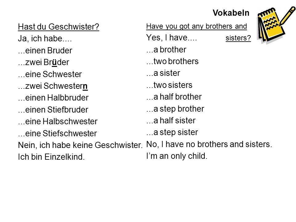 Vokabeln Hast du Geschwister? Ja, ich habe.......einen Bruder...zwei Brüder...eine Schwester...zwei Schwestern...einen Halbbruder...einen Stiefbruder.