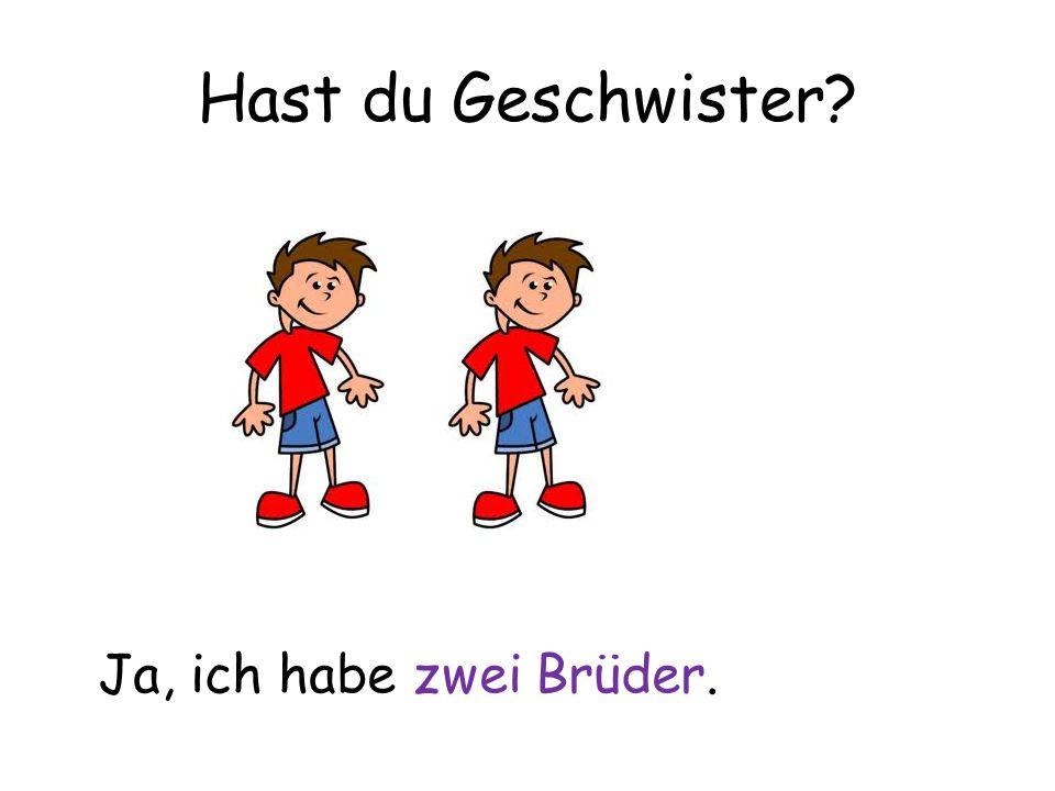 Hast du Geschwister? Ja, ich habe zwei Brüder.