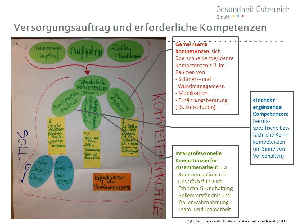 Versorgungsauftrag und erforderliche Kompetenzen Gemeinsame Kompetenzen: sich überschneidende/idente Kompetenzen z.B. im Rahmen von - Schmerz- und Wun