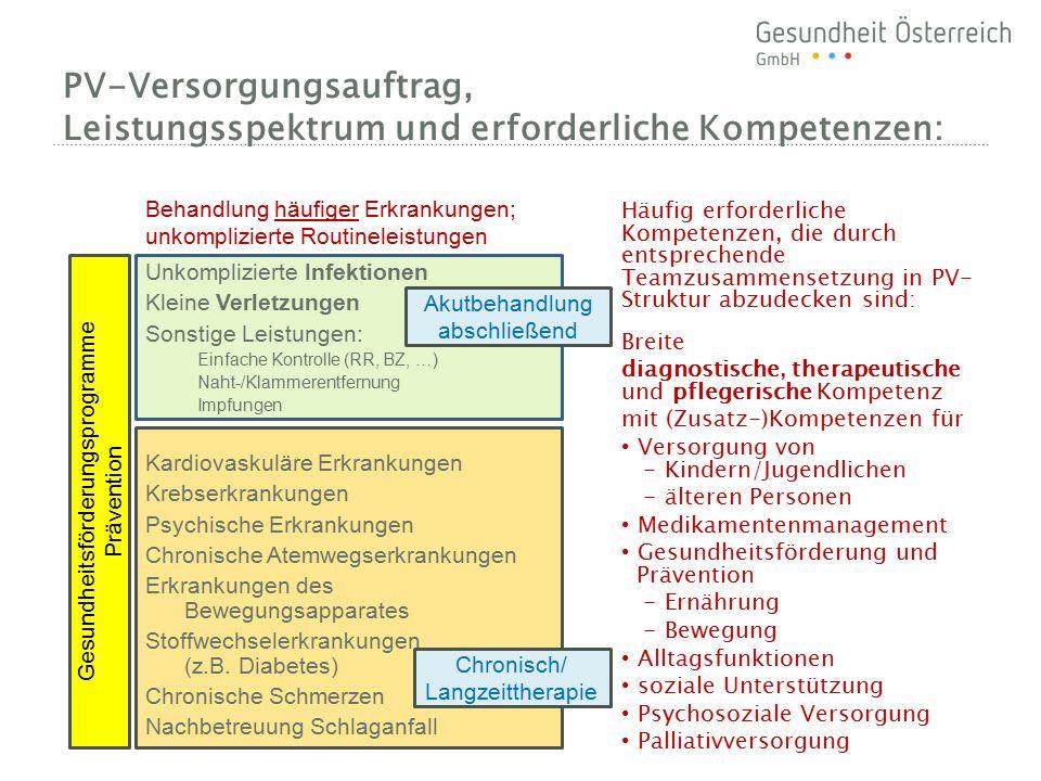 PV-Versorgungsauftrag, Leistungsspektrum und erforderliche Kompetenzen: Unkomplizierte Infektionen Kleine Verletzungen Sonstige Leistungen: Einfache K