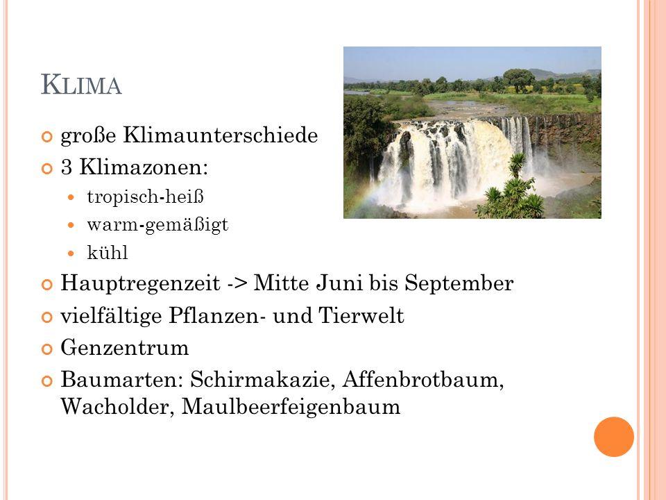 B EVÖLKERUNG Vielvölkerstaat über 80 ethnische Gruppen 40% Oroma 20-30% Amharen Aderi 10% Wolaita 7% Sidama 6% Somali 6% Gumuz 4% Afar 3% Gurage 1% Agaw