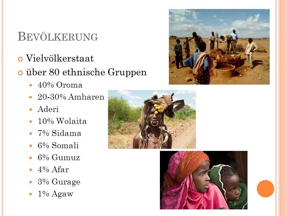 P ROBLEME Konflikt mit Eritrea seit 1993 unabhängig Konflikt wegen Grenzverlauf Hungersnöte sehr niedrig entwickelte Landwirtschaft 49% unterernährt geringe technische Ausbildung Wasser ungenießbar eines der schlechtesten Gesundheitssysteme schlechte Verkehrsinfrastruktur