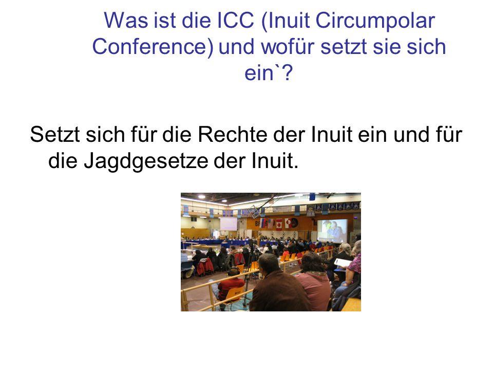 Was ist die ICC (Inuit Circumpolar Conference) und wofür setzt sie sich ein`? Setzt sich für die Rechte der Inuit ein und für die Jagdgesetze der Inui