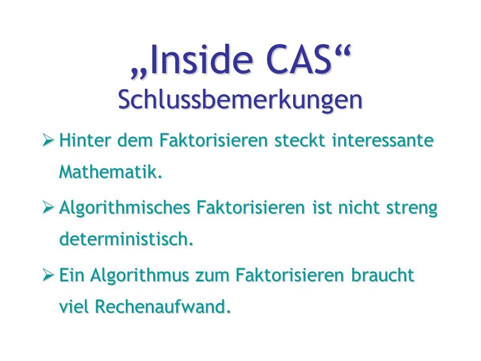 """""""Inside CAS Schlussbemerkungen  Hinter dem Faktorisieren steckt interessante Mathematik."""