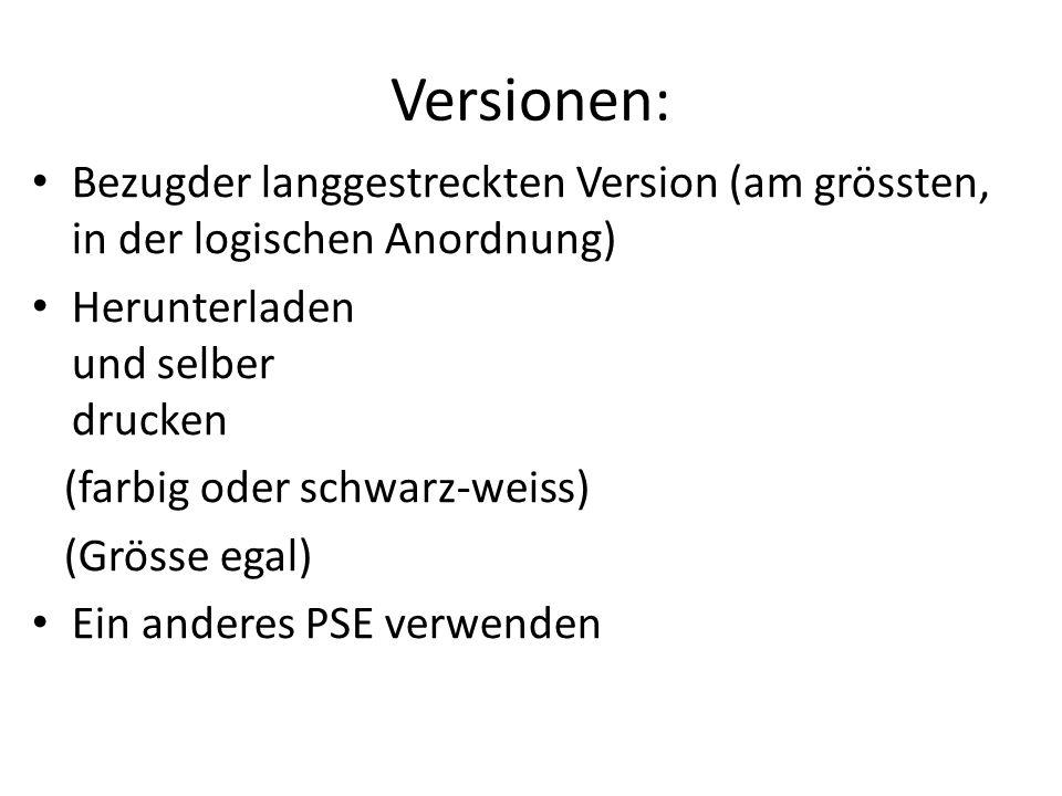Versionen: In Tests dürfen sich nicht verwenden: Zusätzlich beschriftete PSE (ausser Namen)  keine weiteren Einträge.