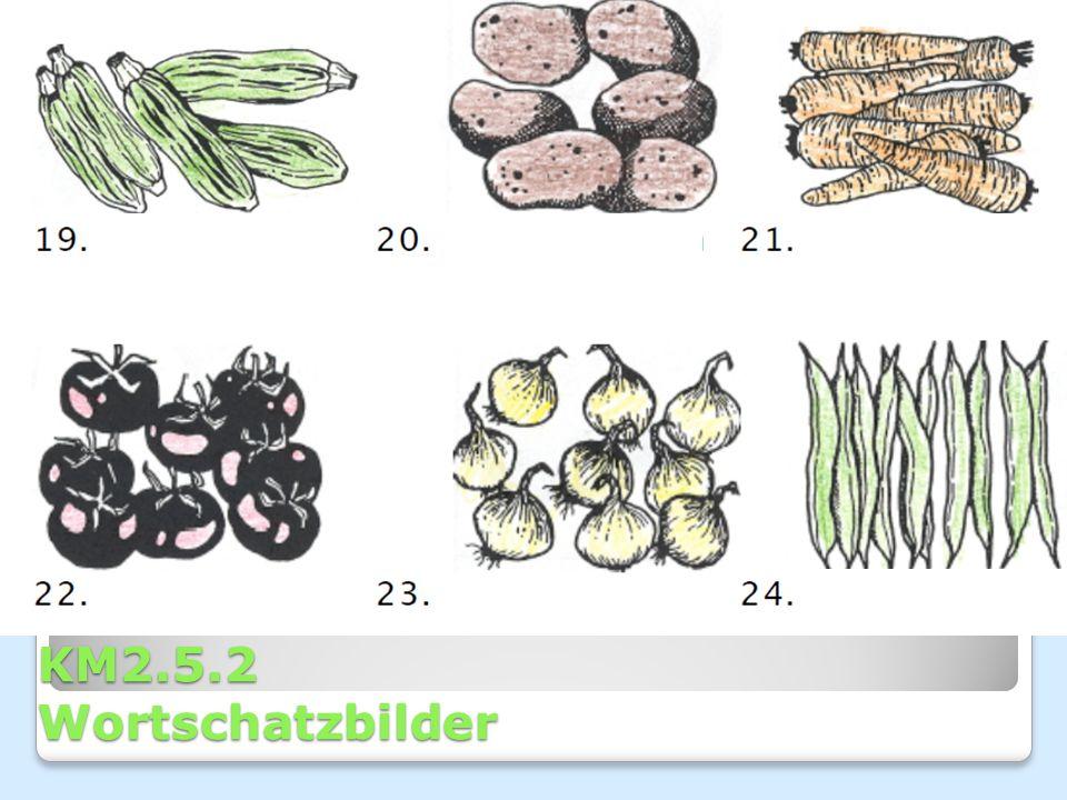 KM2.5.1 Wortschatzbilder