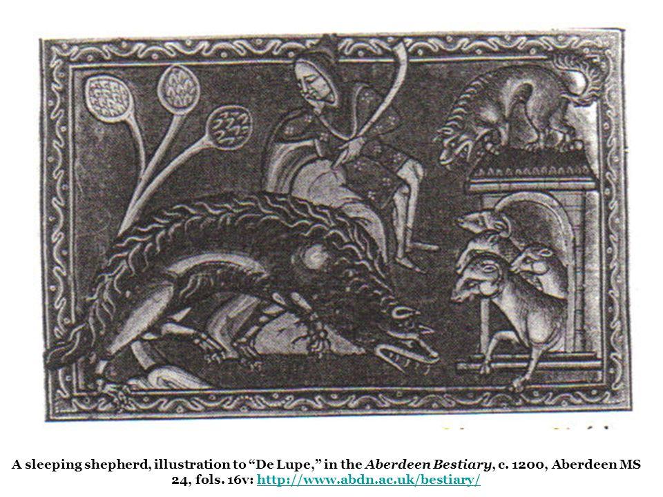 """A sleeping shepherd, illustration to """"De Lupe,"""" in the Aberdeen Bestiary, c. 1200, Aberdeen MS 24, fols. 16v: http://www.abdn.ac.uk/bestiary/http://ww"""