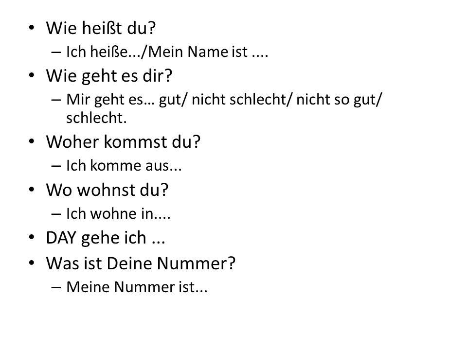 Wie heißt du. – Ich heiße.../Mein Name ist.... Wie geht es dir.