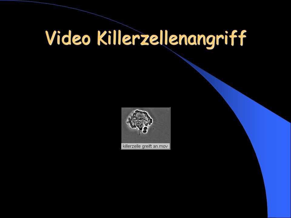 Video Killerzellenangriff