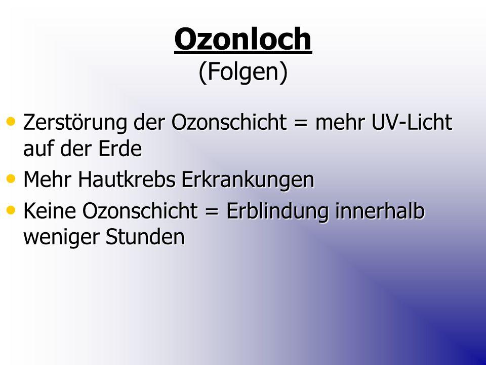 Ozonloch (Folgen) Zerstörung der Ozonschicht = mehr UV-Licht auf der Erde Zerstörung der Ozonschicht = mehr UV-Licht auf der Erde Mehr Hautkrebs Erkrankungen Mehr Hautkrebs Erkrankungen Keine Ozonschicht = Erblindung innerhalb weniger Stunden Keine Ozonschicht = Erblindung innerhalb weniger Stunden