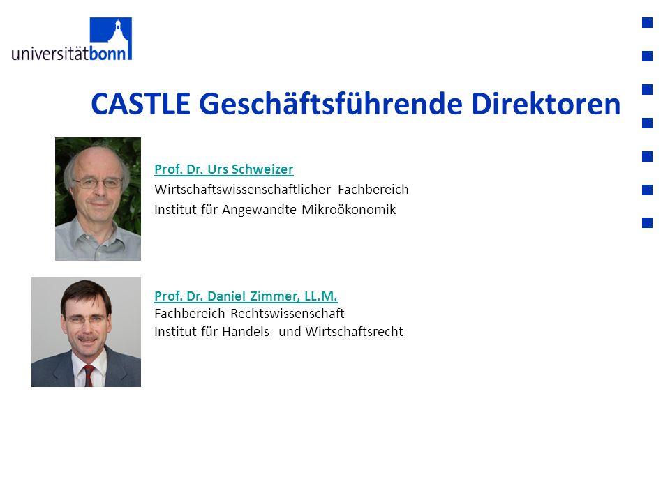 CASTLE Geschäftsführende Direktoren Prof. Dr. Urs Schweizer Prof. Dr. Urs Schweizer Wirtschaftswissenschaftlicher Fachbereich Institut für Angewandte
