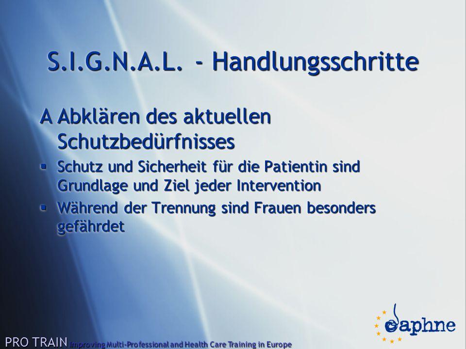 S.I.G.N.A.L. - Handlungsschritte AAbklären des aktuellen Schutzbedürfnisses  Schutz und Sicherheit für die Patientin sind Grundlage und Ziel jeder In