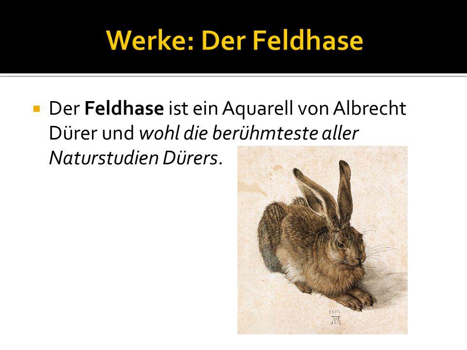 Der Feldhase ist ein Aquarell von Albrecht Dürer und wohl die berühmteste aller Naturstudien Dürers.