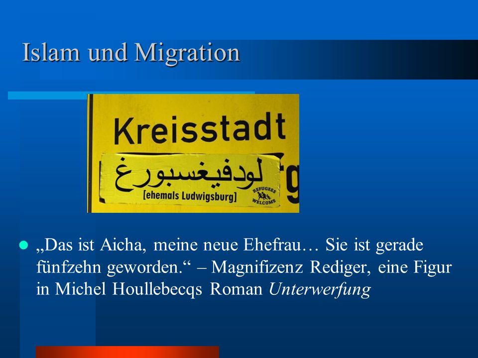 """Islam und Migration """"Das ist Aicha, meine neue Ehefrau… Sie ist gerade fünfzehn geworden."""" – Magnifizenz Rediger, eine Figur in Michel Houllebecqs Rom"""