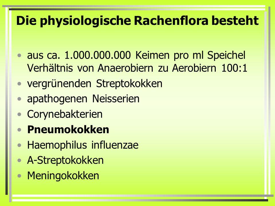 Die physiologische Rachenflora besteht aus ca. 1.000.000.000 Keimen pro ml Speichel Verhältnis von Anaerobiern zu Aerobiern 100:1 vergrünenden Strepto