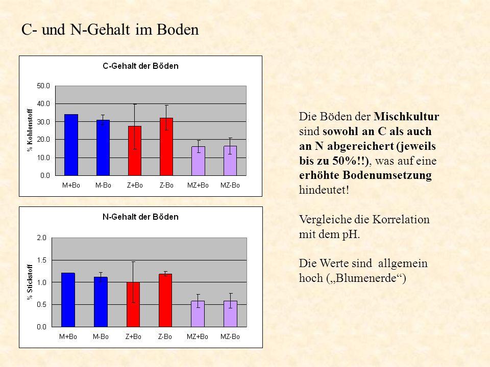 Die Böden der Mischkultur sind sowohl an C als auch an N abgereichert (jeweils bis zu 50%!!), was auf eine erhöhte Bodenumsetzung hindeutet! Vergleich