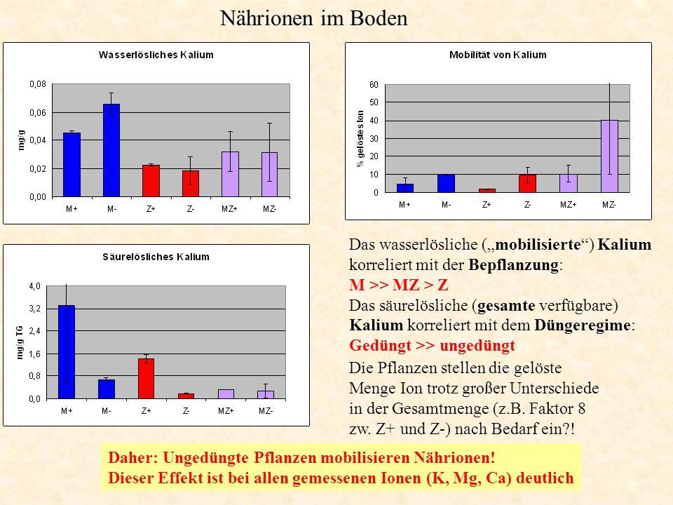 """Nährionen im Boden Das wasserlösliche (""""mobilisierte"""") Kalium korreliert mit der Bepflanzung: M >> MZ > Z Das säurelösliche (gesamte verfügbare) Kaliu"""