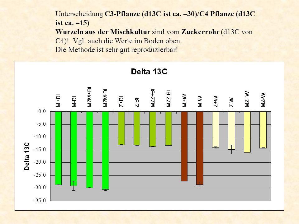 Unterscheidung C3-Pflanze (d13C ist ca. –30)/C4 Pflanze (d13C ist ca. –15) Wurzeln aus der Mischkultur sind vom Zuckerrohr (d13C von C4)! Vgl. auch di