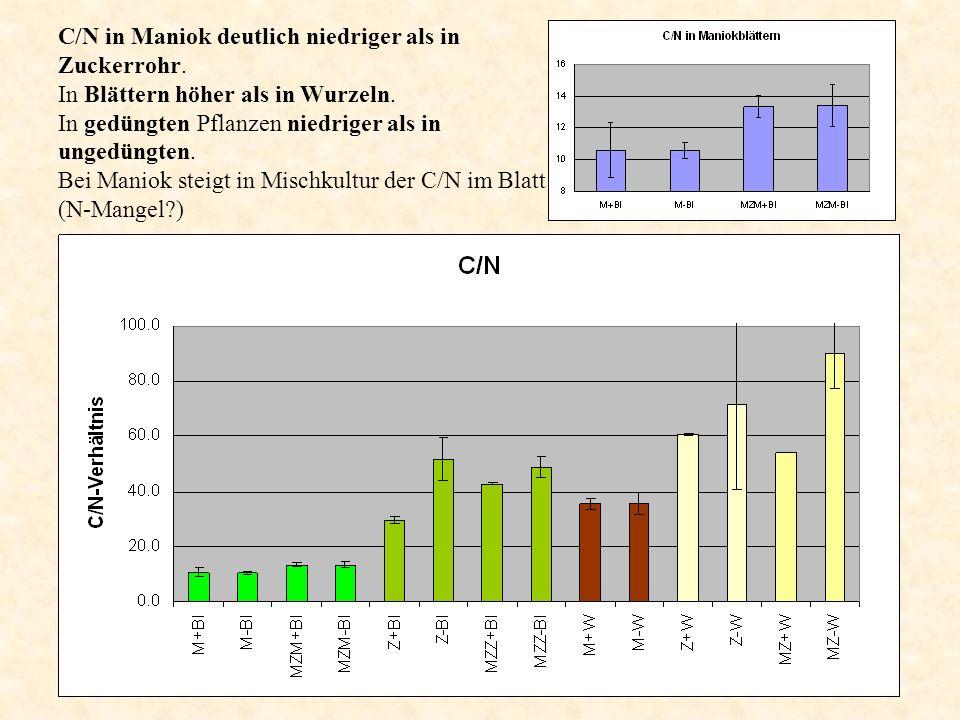 C/N in Maniok deutlich niedriger als in Zuckerrohr. In Blättern höher als in Wurzeln. In gedüngten Pflanzen niedriger als in ungedüngten. Bei Maniok s