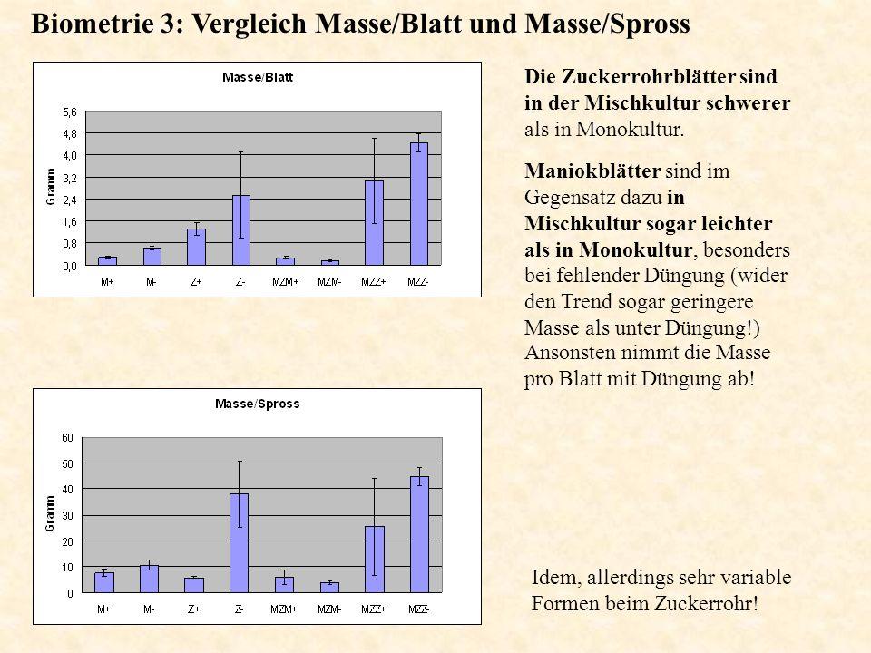 Biometrie 3: Vergleich Masse/Blatt und Masse/Spross Ansonsten nimmt die Masse pro Blatt mit Düngung ab! Idem, allerdings sehr variable Formen beim Zuc