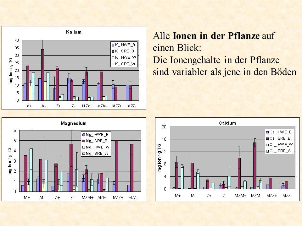 Alle Ionen in der Pflanze auf einen Blick: Die Ionengehalte in der Pflanze sind variabler als jene in den Böden