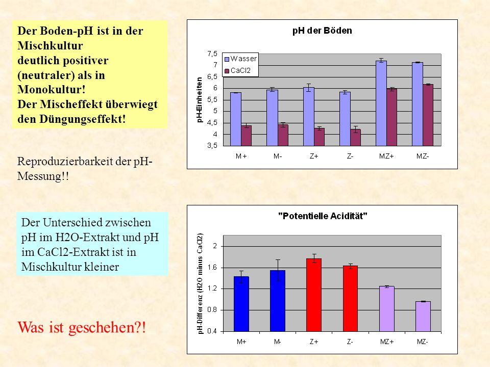 Der Boden-pH ist in der Mischkultur deutlich positiver (neutraler) als in Monokultur! Der Mischeffekt überwiegt den Düngungseffekt! Der Unterschied zw