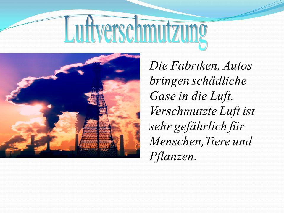 Die Fabriken, Autos bringen schädliche Gase in die Luft. Verschmutzte Luft ist sehr gefährlich für Menschen,Tiere und Pflanzen.