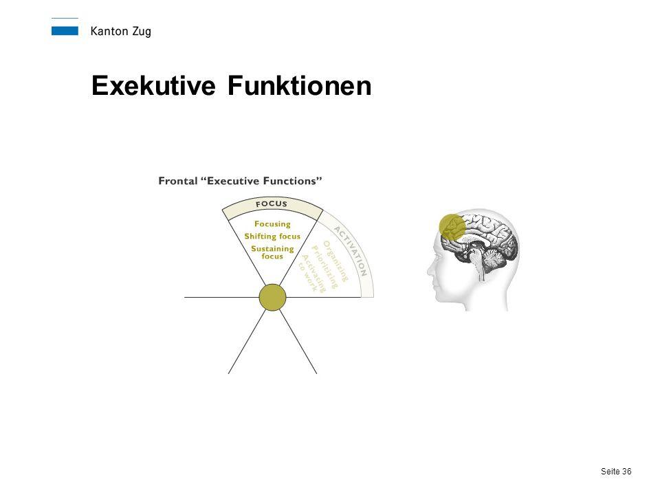 Seite 36 Exekutive Funktionen