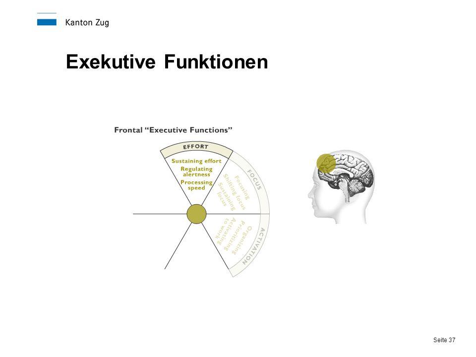 Seite 37 Exekutive Funktionen