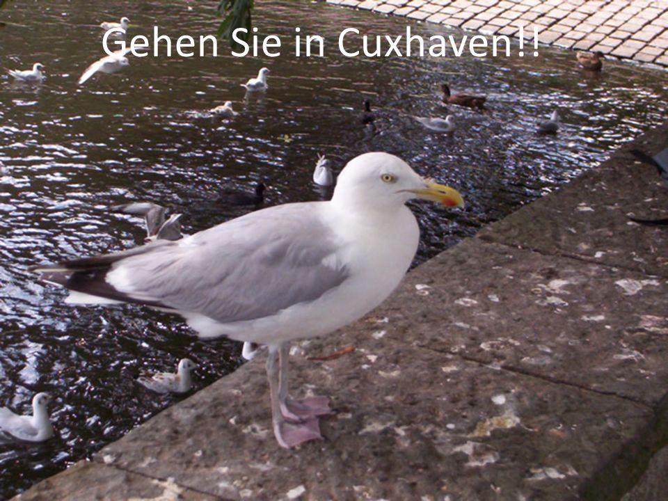 Gehen Sie in Cuxhaven!!