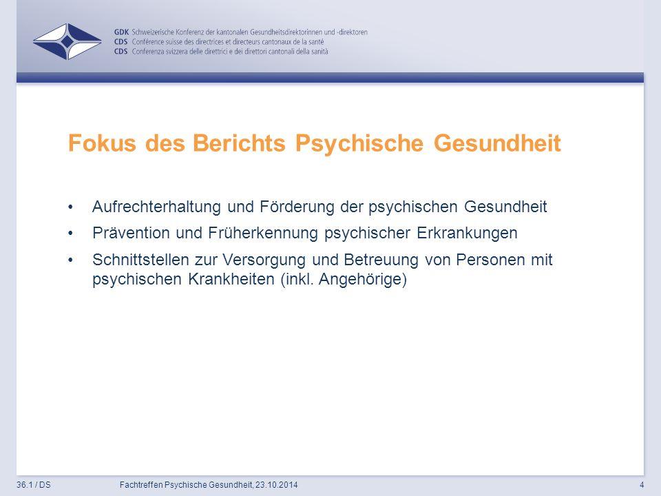 Fokus des Berichts Psychische Gesundheit Aufrechterhaltung und Förderung der psychischen Gesundheit Prävention und Früherkennung psychischer Erkrankungen Schnittstellen zur Versorgung und Betreuung von Personen mit psychischen Krankheiten (inkl.