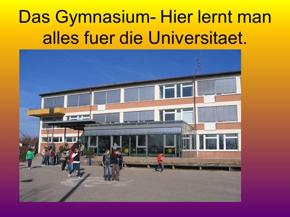 Das Gymnasium- Hier lernt man alles fuer die Universitaet.